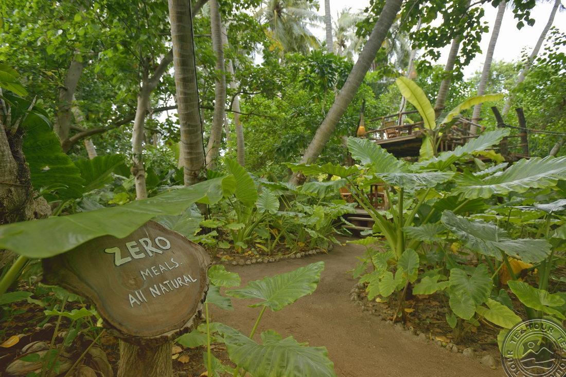 SUN ISLAND RESORT & SPA, Мальдивы, Мальдивы, описание, фотогалерея и туры в отель - TEZ TOUR